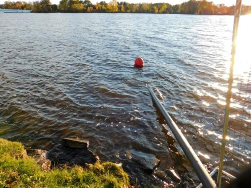 Effluent discharge to the Wisconsin River