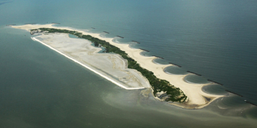 Aerial view of Raccoon Island